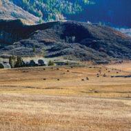 Aspen: A Monk's Musings
