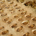 West Robins Oyster Co