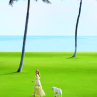 Aerin Lauder's Palm Beach