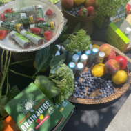 Club Purist kicked off its 'Wellness Wednesday' series in the Hamptons